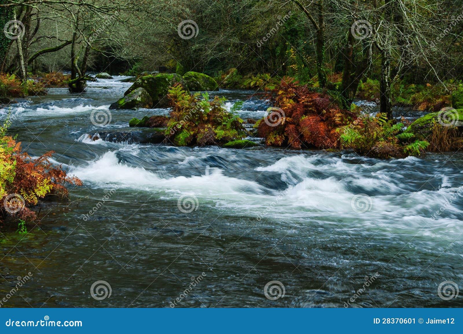 Paesaggio con il fiume