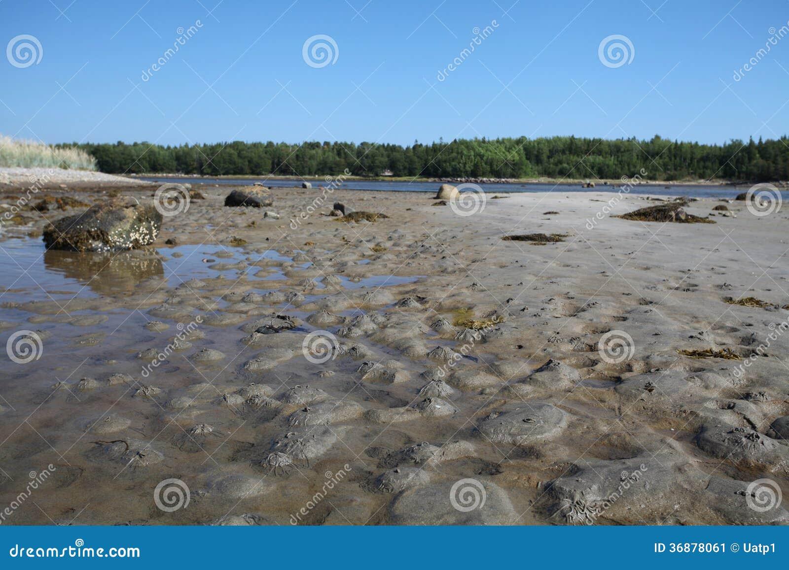 Download Paesaggio Con L'immagine Della Spiaggia Del Mar Bianco Immagine Stock - Immagine di lago, aperto: 36878061