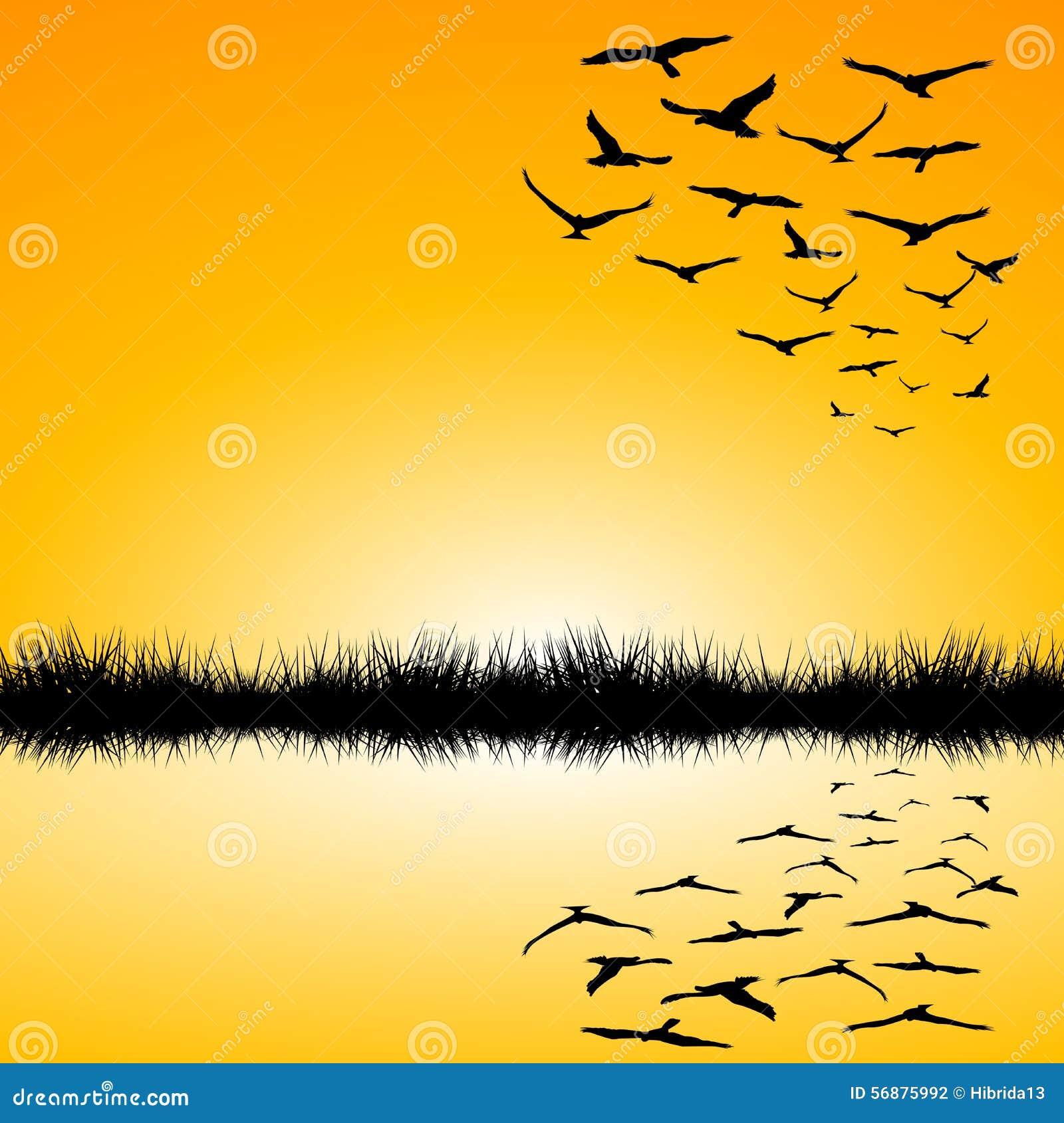 Paesaggio con una volata degli uccelli e del lago