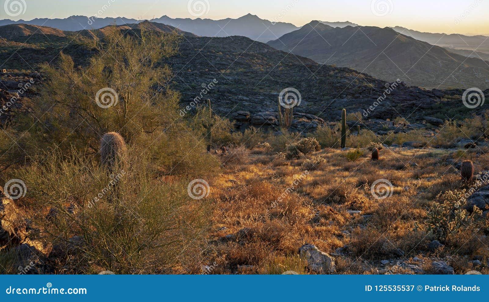 Paesaggio del deserto e montagne vicino a Phoenix Arizona