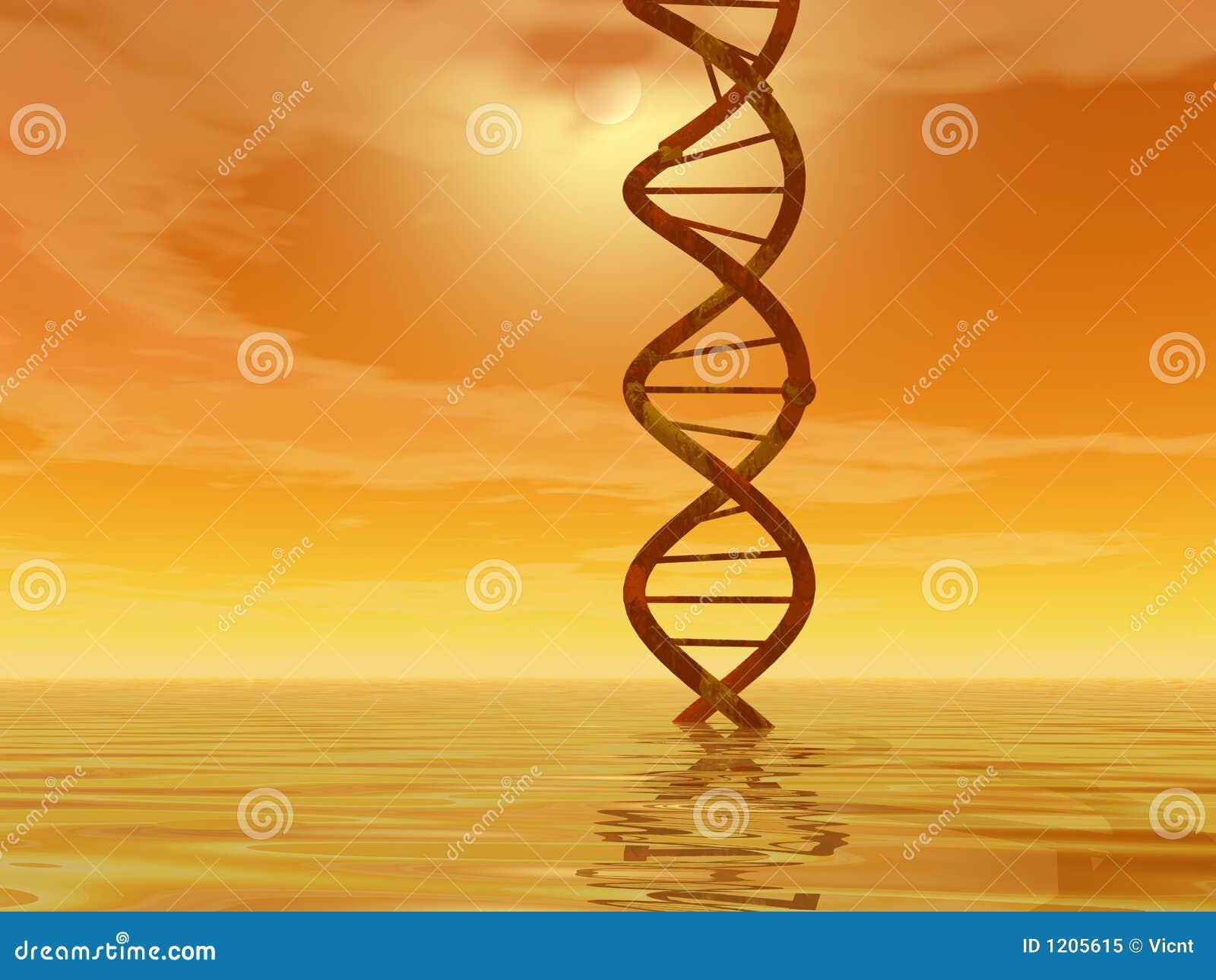 Paesaggio del DNA