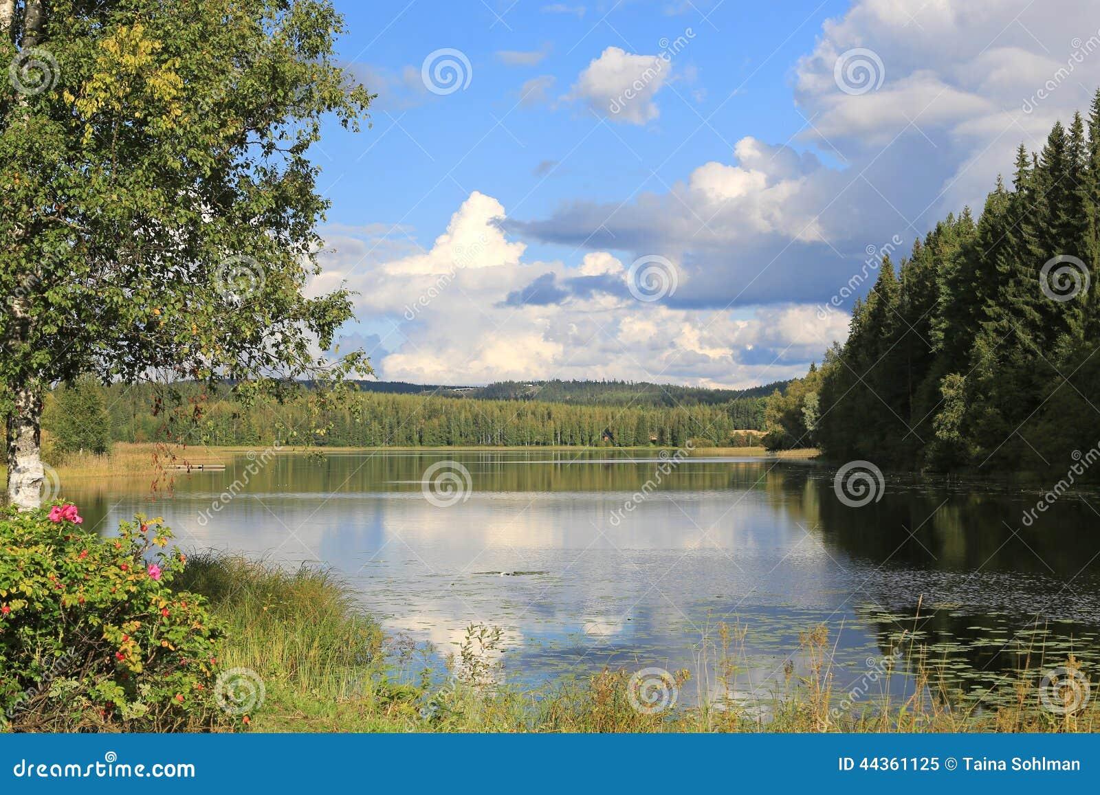 Paesaggio del lago in Finlandia centrale