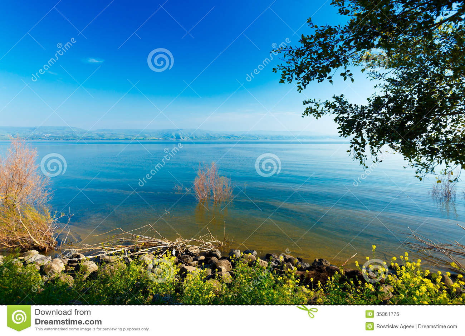 Paesaggio del lago kinneret mare della galilea for Planimetrie della cabina del lago