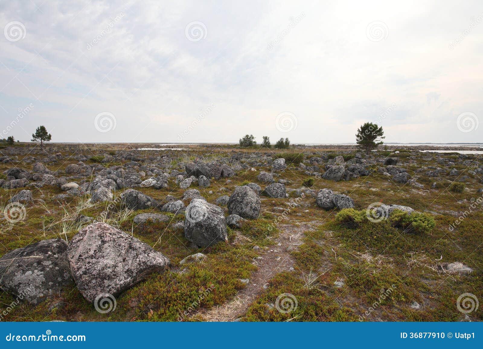 Download Paesaggio del Nord fotografia stock. Immagine di north - 36877910