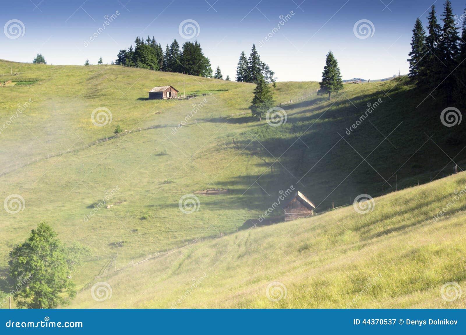 Paesaggio del plateau della montagna (carpatico, Ucraina)