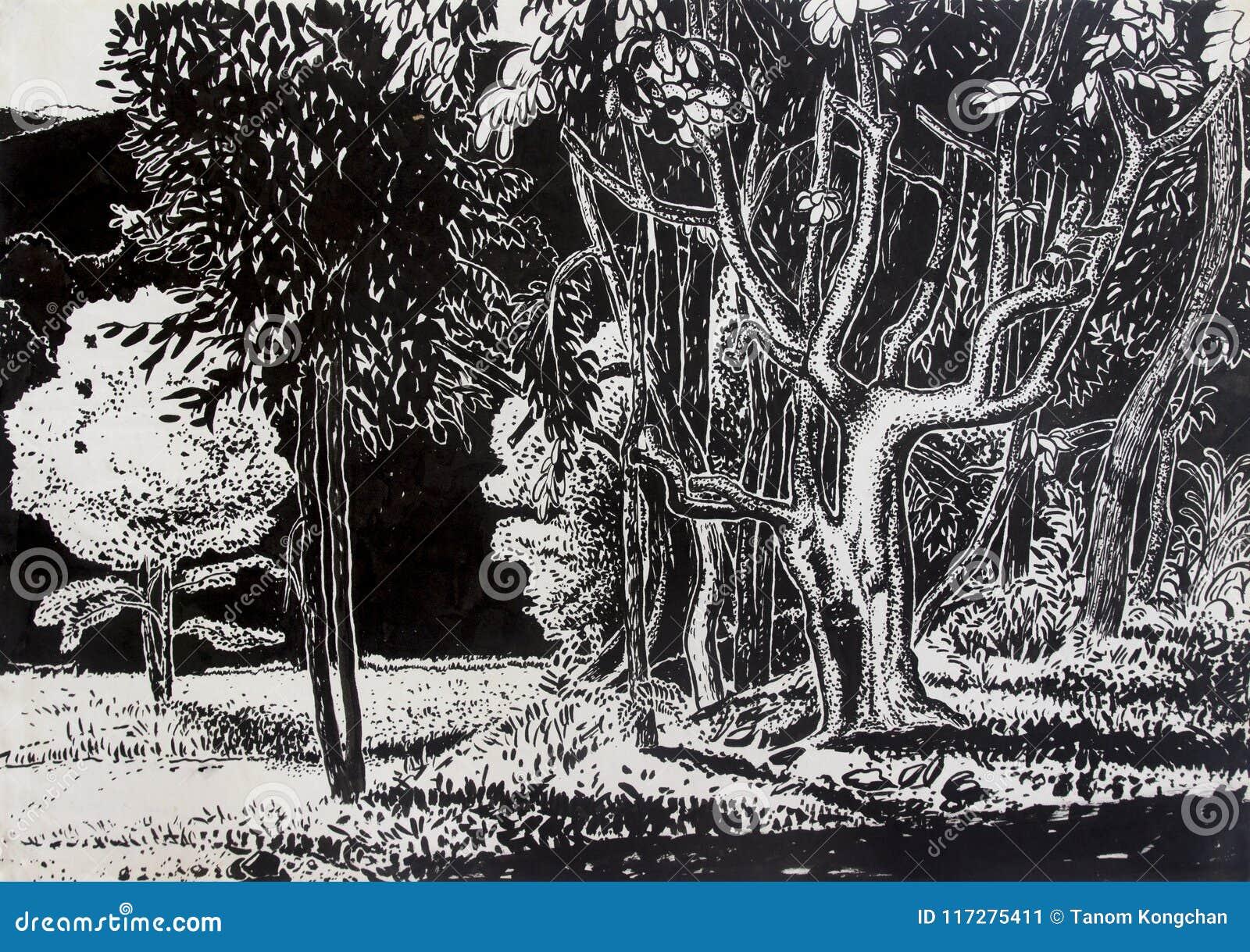 Paesaggio Del Prato Del Disegno Nel Parco Con In Bianco E Nero