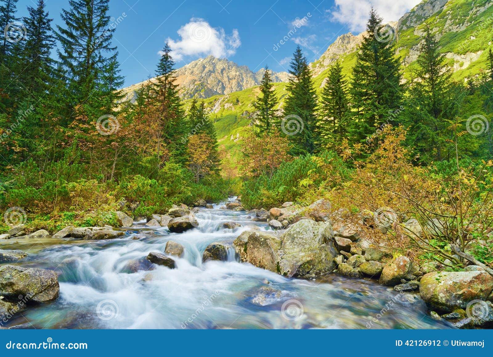 Paesaggio del ruscello della montagna montagne carpatiche fotografia stock - Montagne nature et style ...