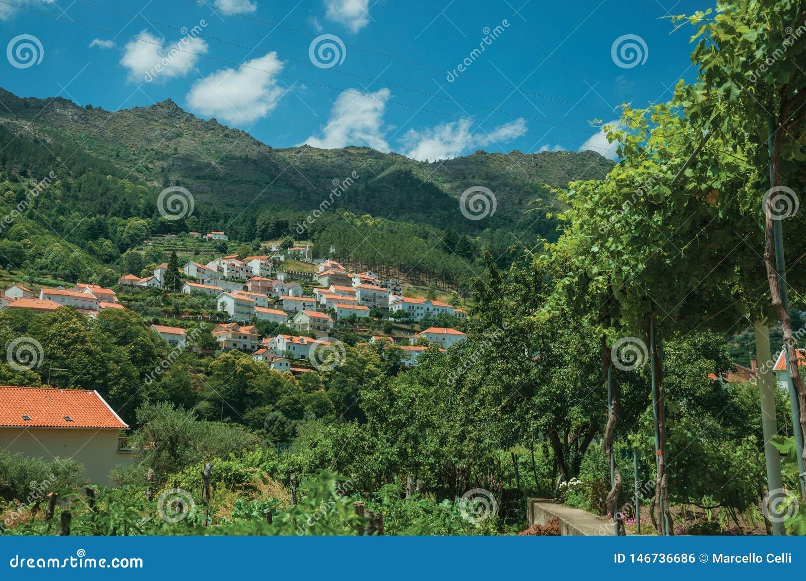 Paesaggio della campagna con i cottage sulla collina