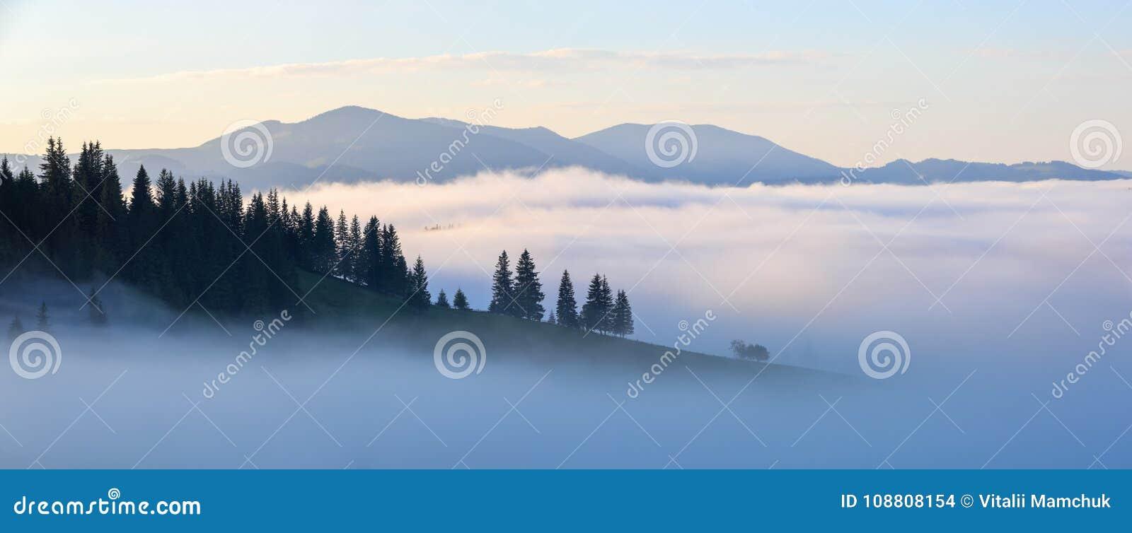 Paesaggio della montagna Alba nelle nubi Nebbia densa con luce morbida piacevole Un giorno di estate piacevole
