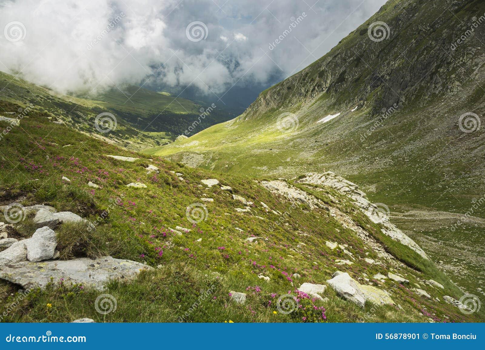 Paesaggio della montagna, bellezza della natura