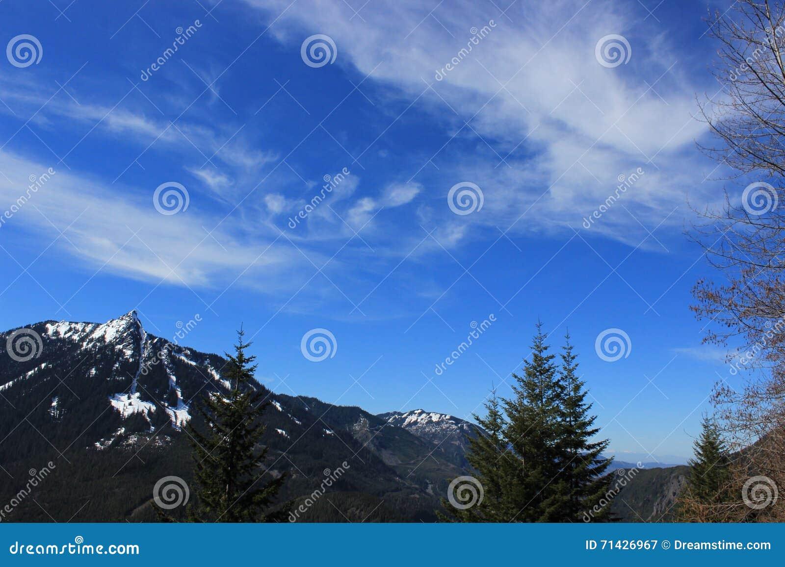 Paesaggio della montagna di Snowy in Washington State