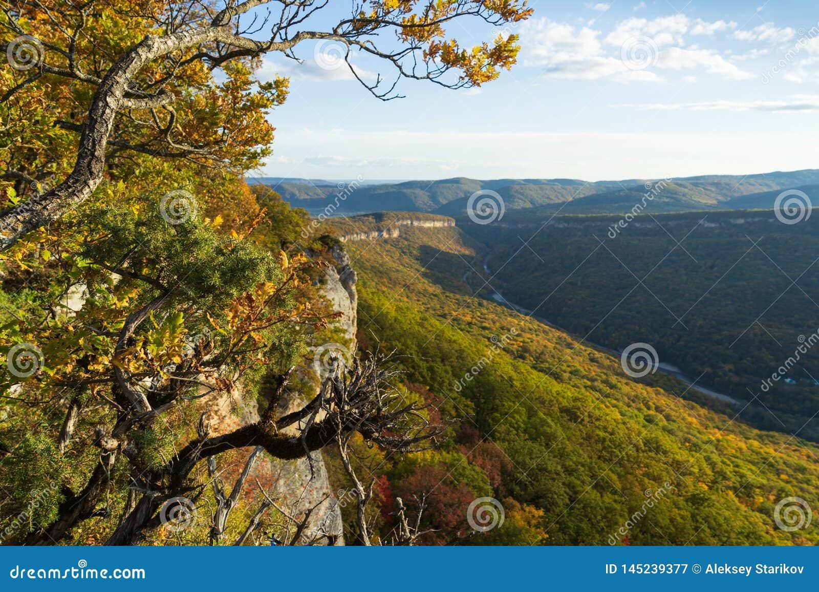 Paesaggio della montagna nel giorno soleggiato uguagliante