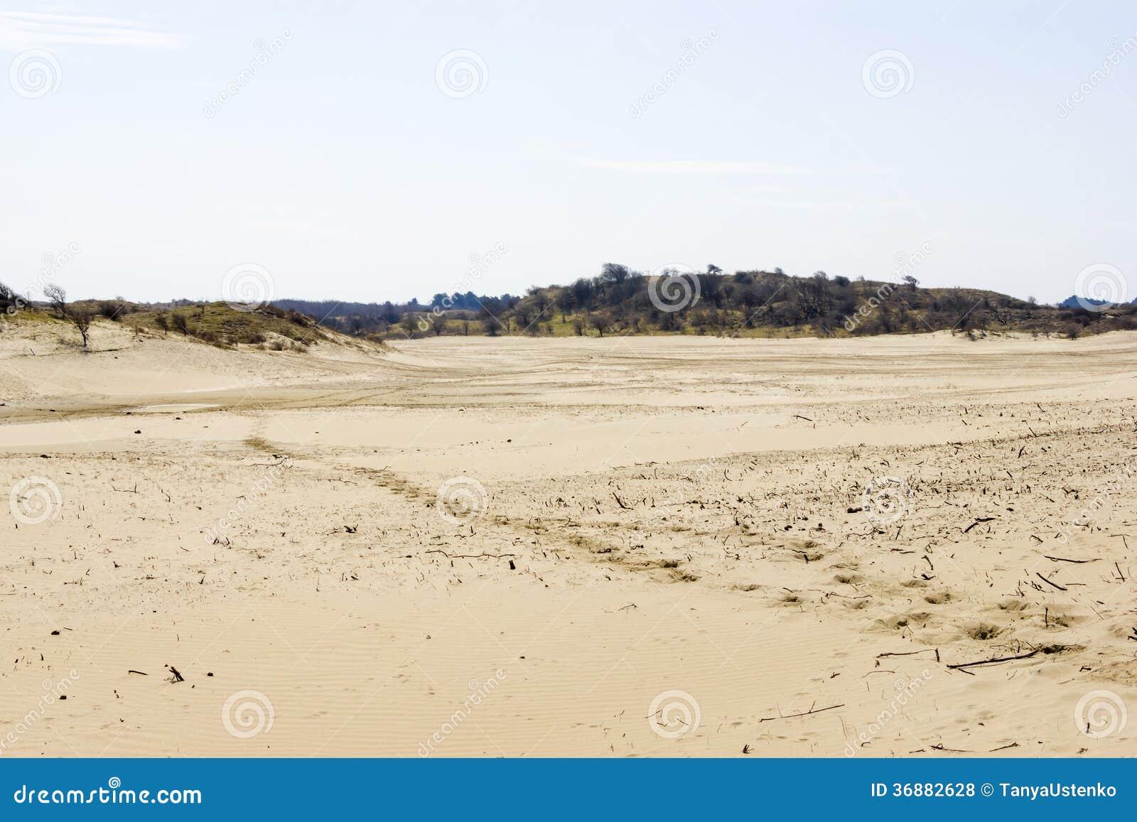 Download Paesaggio della sabbia fotografia stock. Immagine di aperto - 36882628