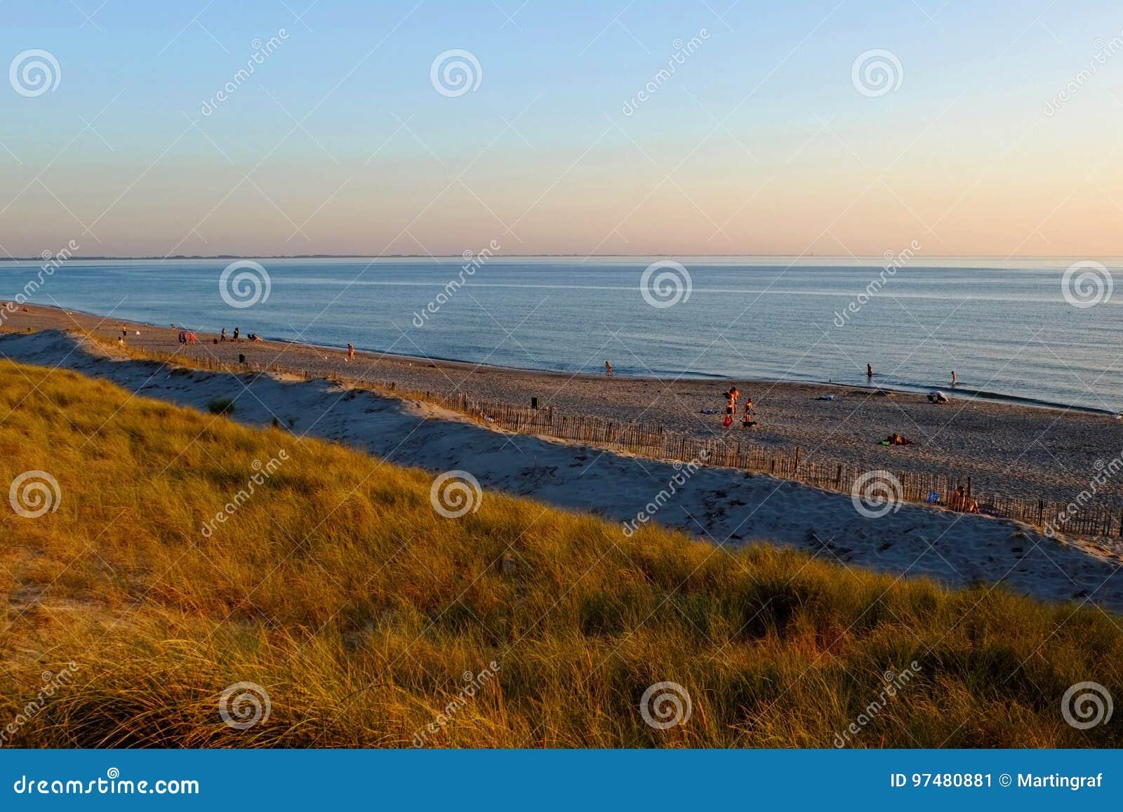 Paesaggio della spiaggia dall umore di tramonto