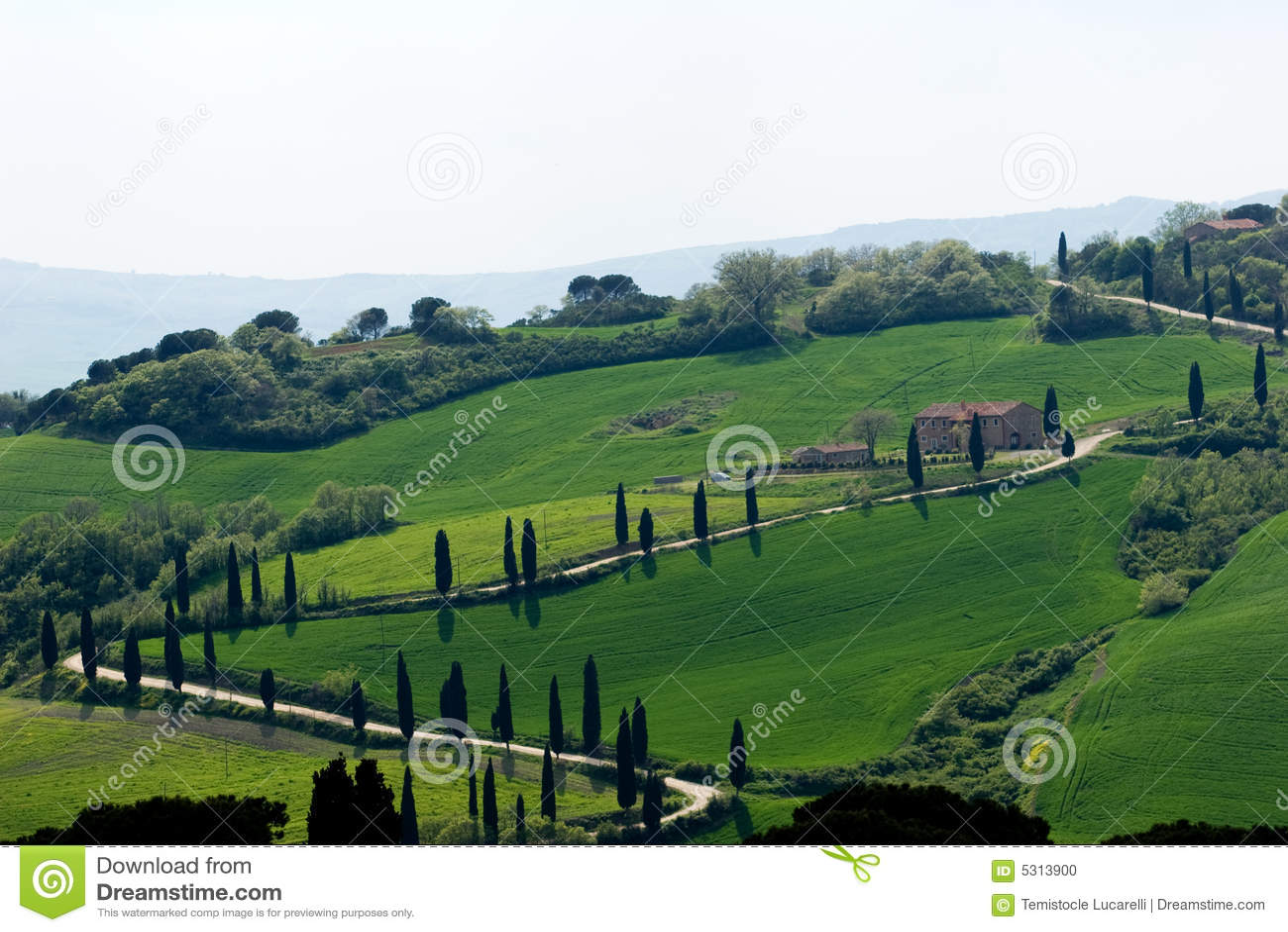 Download Paesaggio della Toscana fotografia stock. Immagine di strada - 5313900