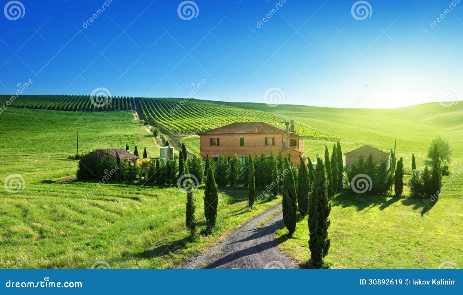 Paesaggio della toscana con la casa tipica dell 39 azienda for Casa classica toscana srl