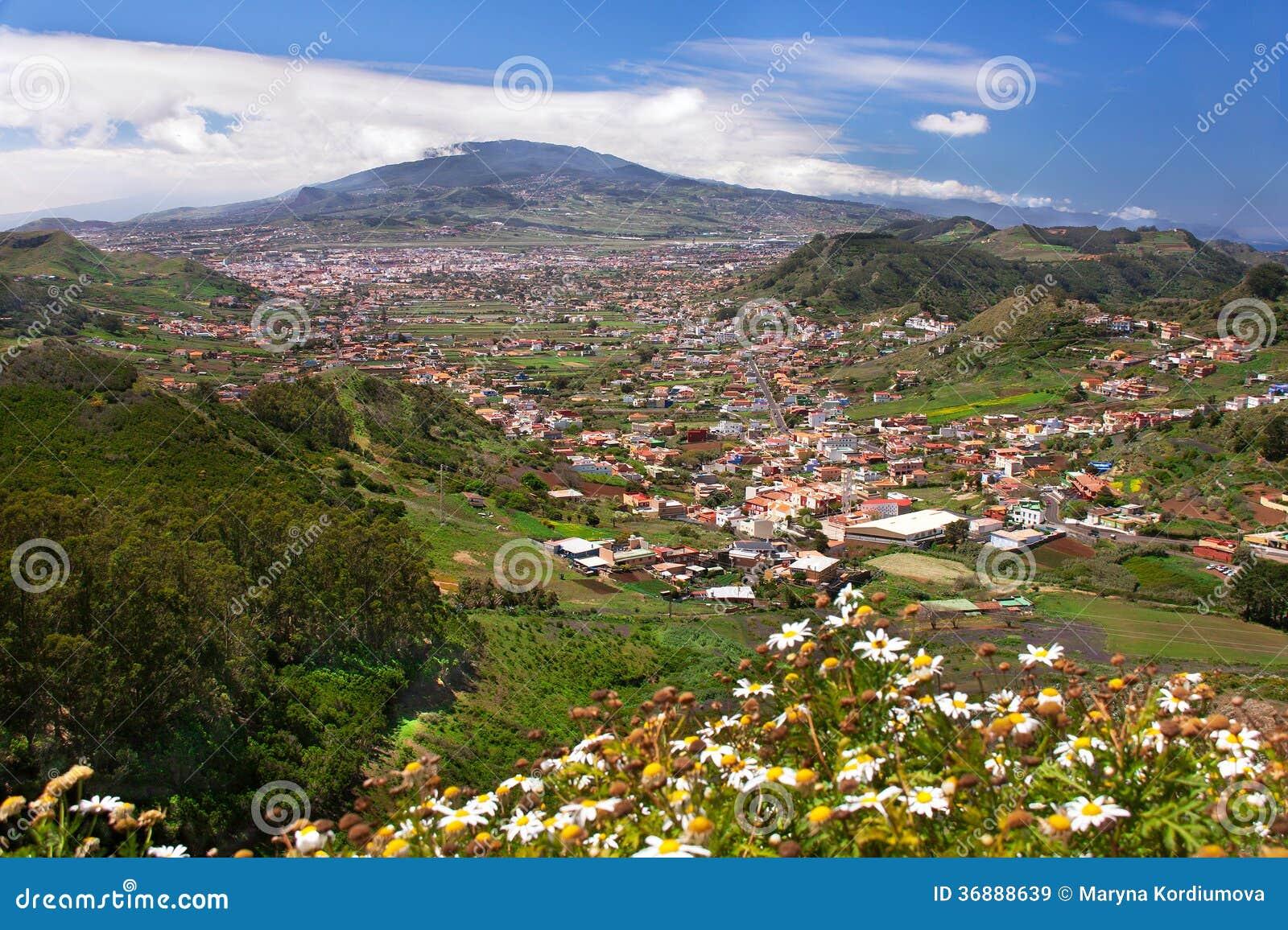 Download Paesaggio Della Valle Della Montagna Immagine Stock - Immagine di domestico, basso: 36888639