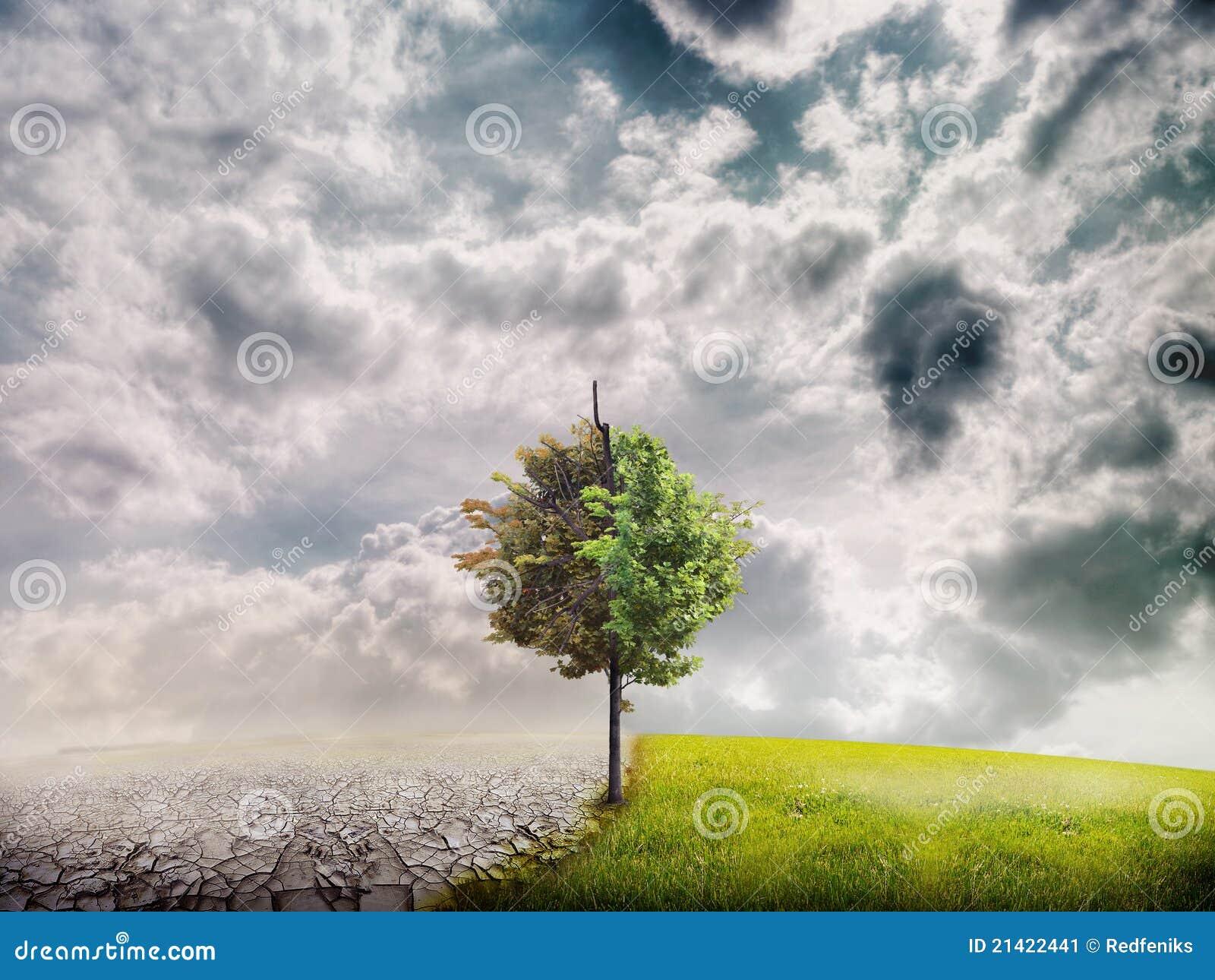Paesaggio di ecologia