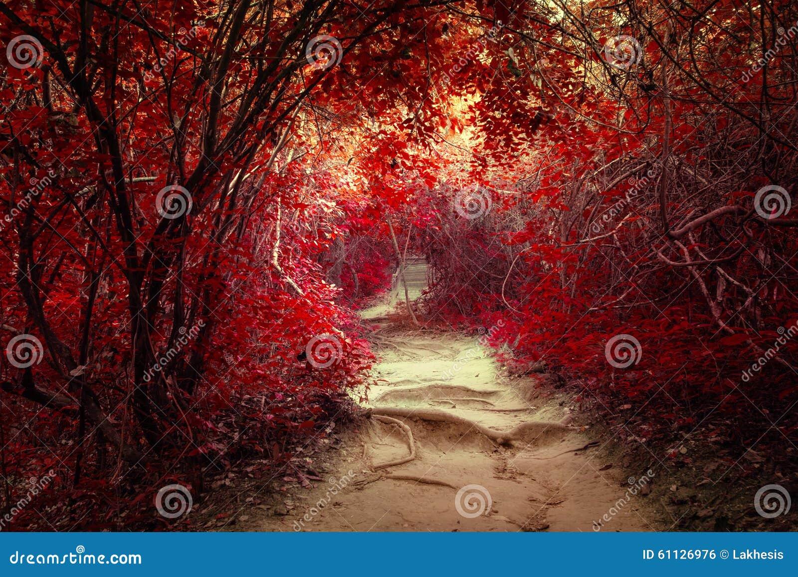 Paesaggio di fantasia alla foresta tropicale della giungla con il tunnel