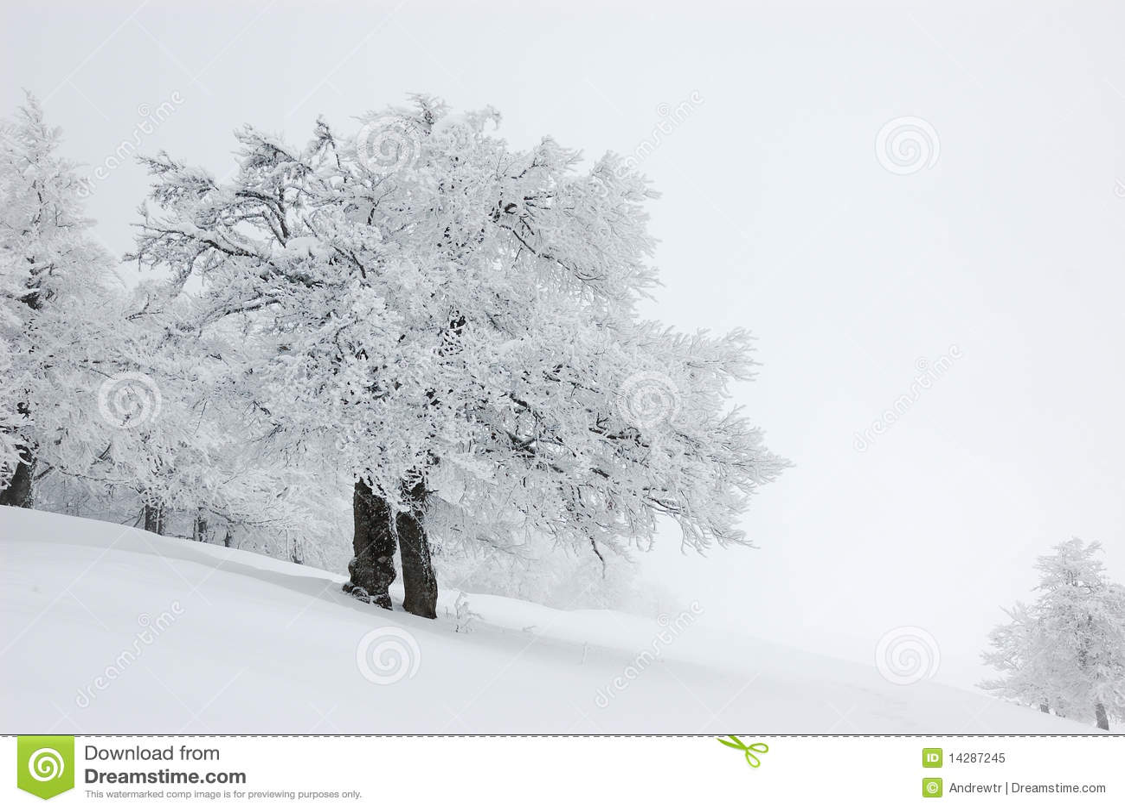 Paesaggio di inverno, Ucraina