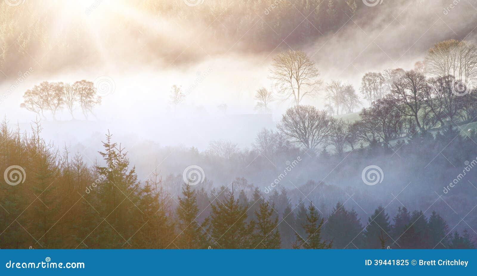 Paesaggio di mattina