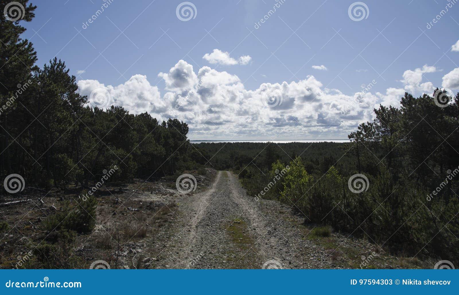 Paesaggio di Nida