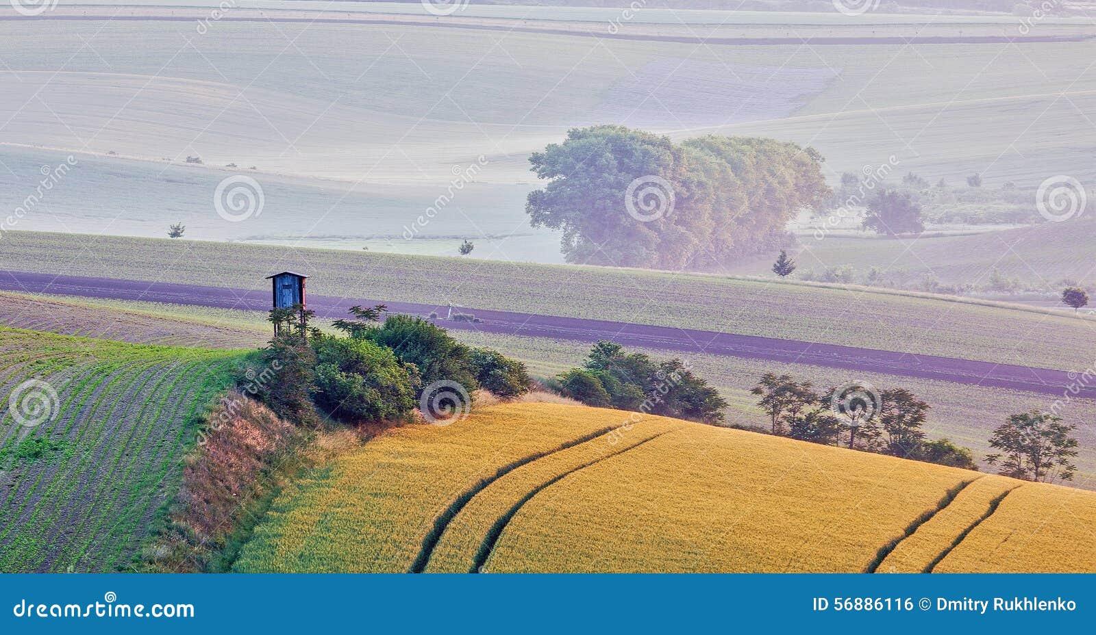Paesaggio di rotolamento di Moravian con la torre di caccia