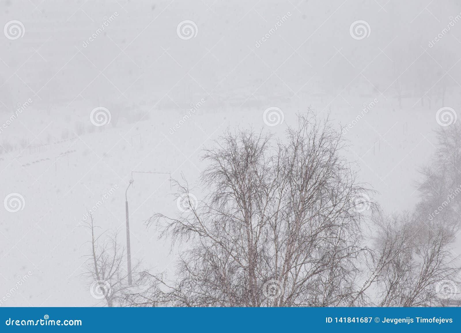 Paesaggio di Snowy - vista della bufera di neve dal fuco aereo della finestra sparato con visibilità difficile