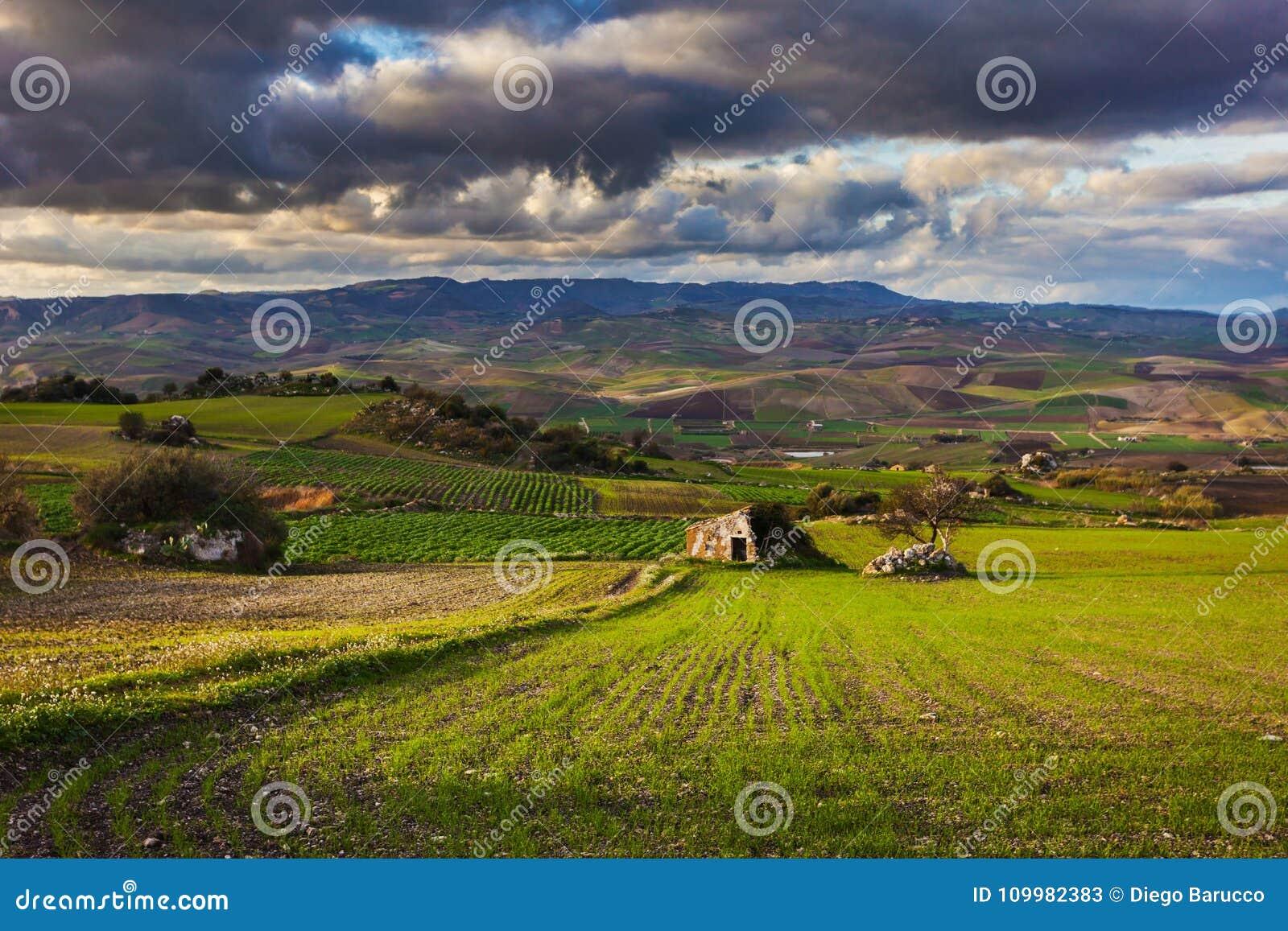 Paesaggio e paese siciliani di agricoltura