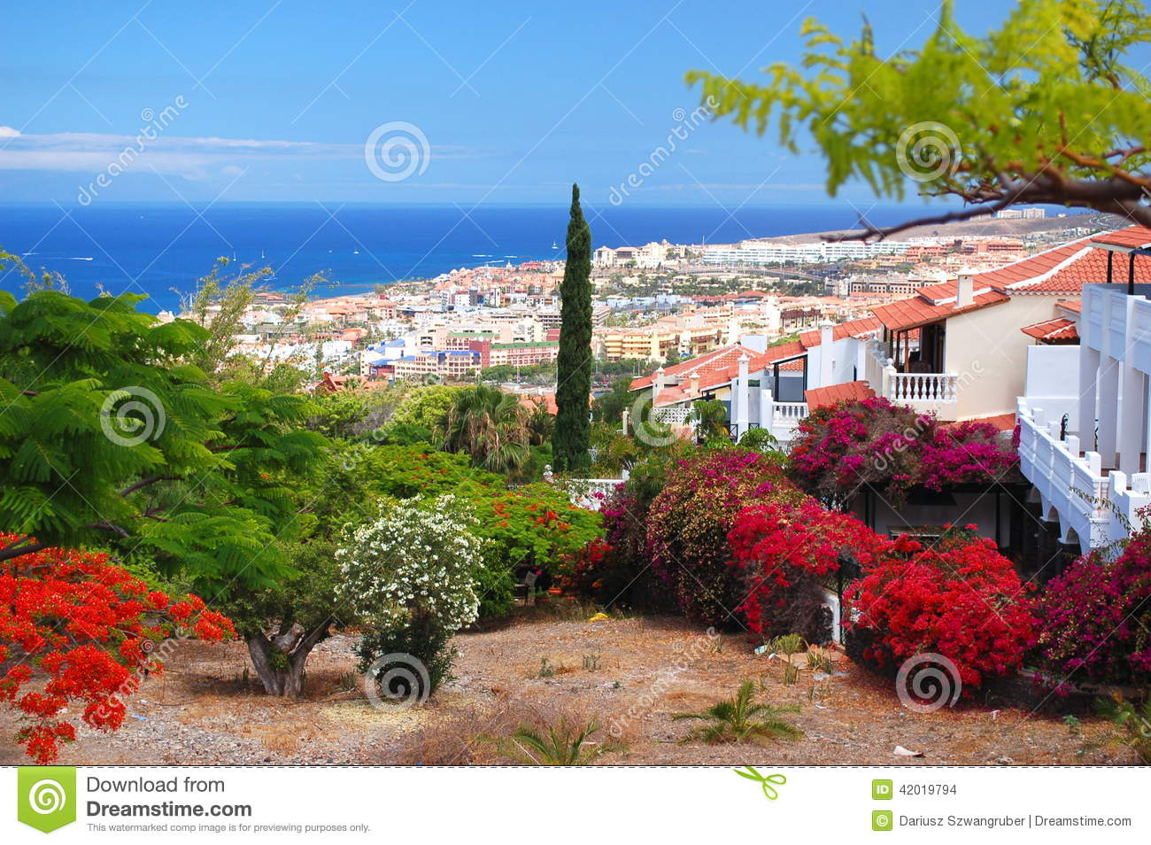 Beautiful Soggiorno Tenerife Images - Design Trends 2017 - shopmakers.us