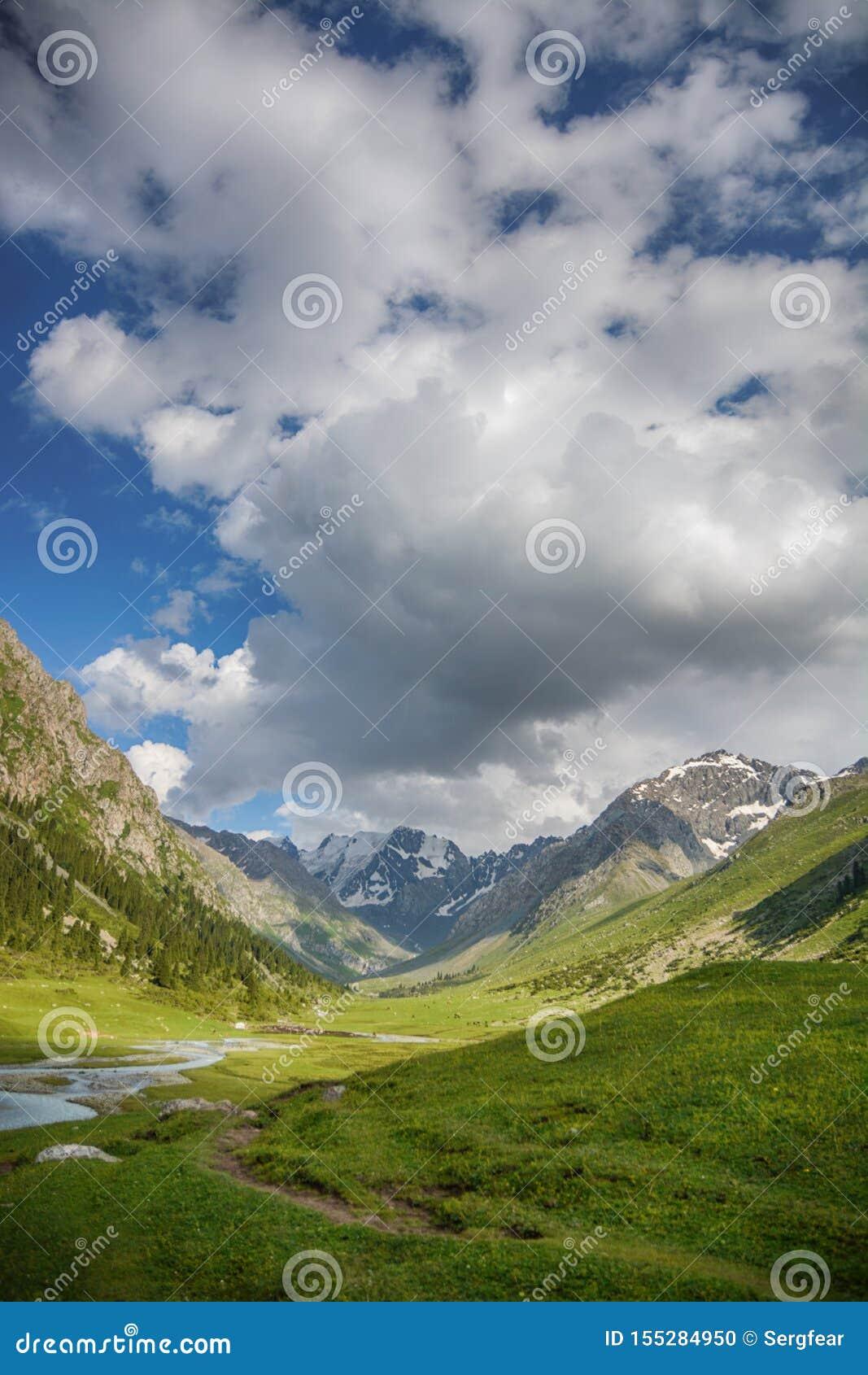 Paesaggio idilliaco di estate con la traccia di escursione nelle montagne con i bei pascoli verdi freschi della montagna e la mon