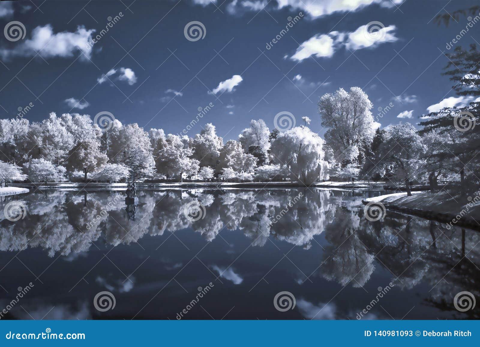 Paesaggio infrarosso degli alberi e dello stagno
