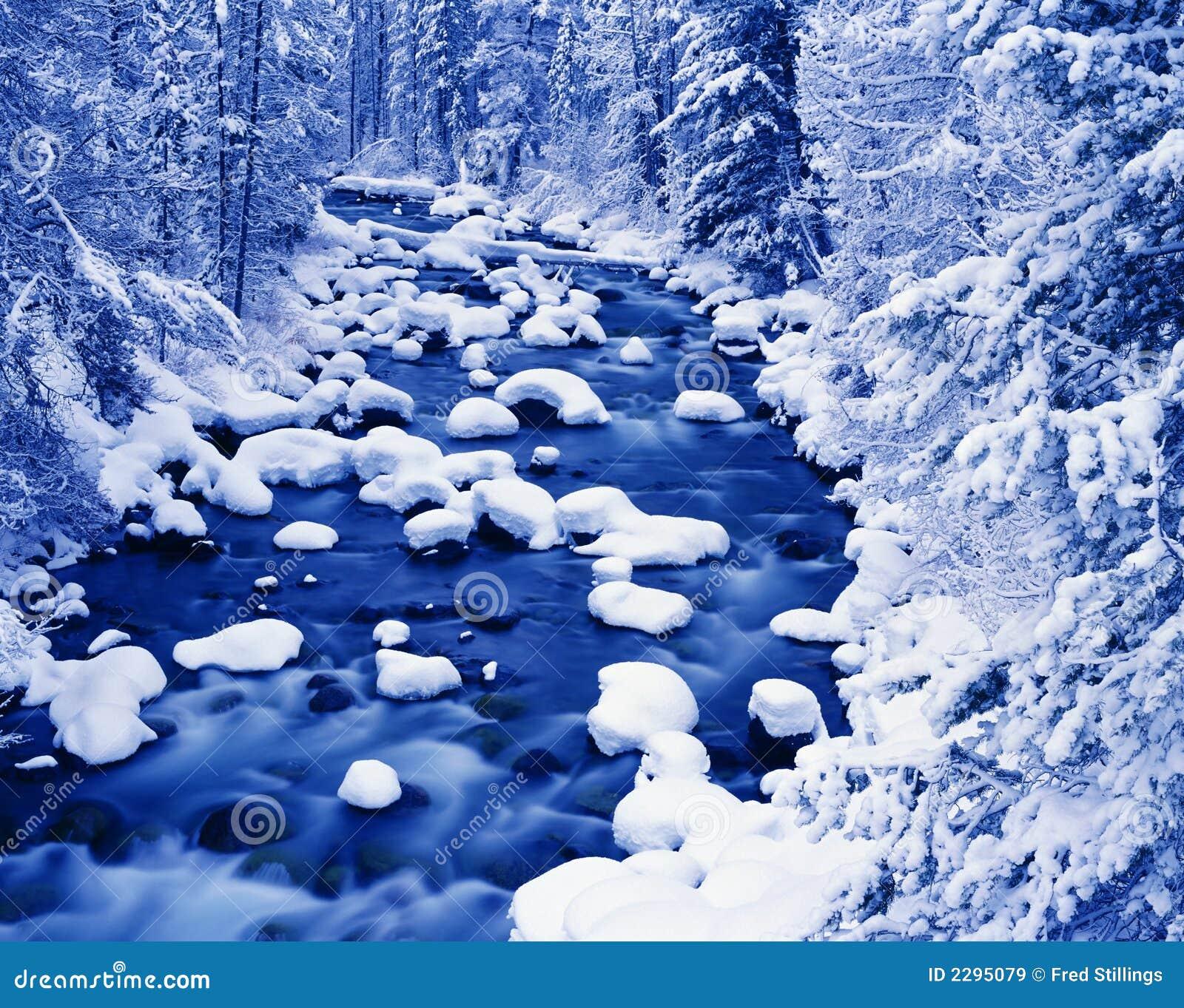 Paesaggio invernale del fiume immagini stock libere da for Disegni paesaggio invernale