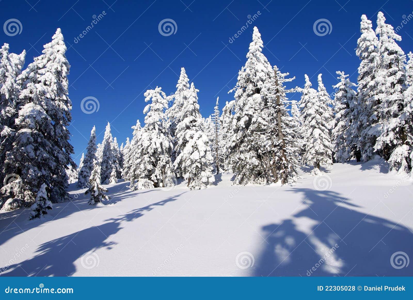 Paesaggio invernale di paesaggio fotografia stock for Disegni paesaggio invernale