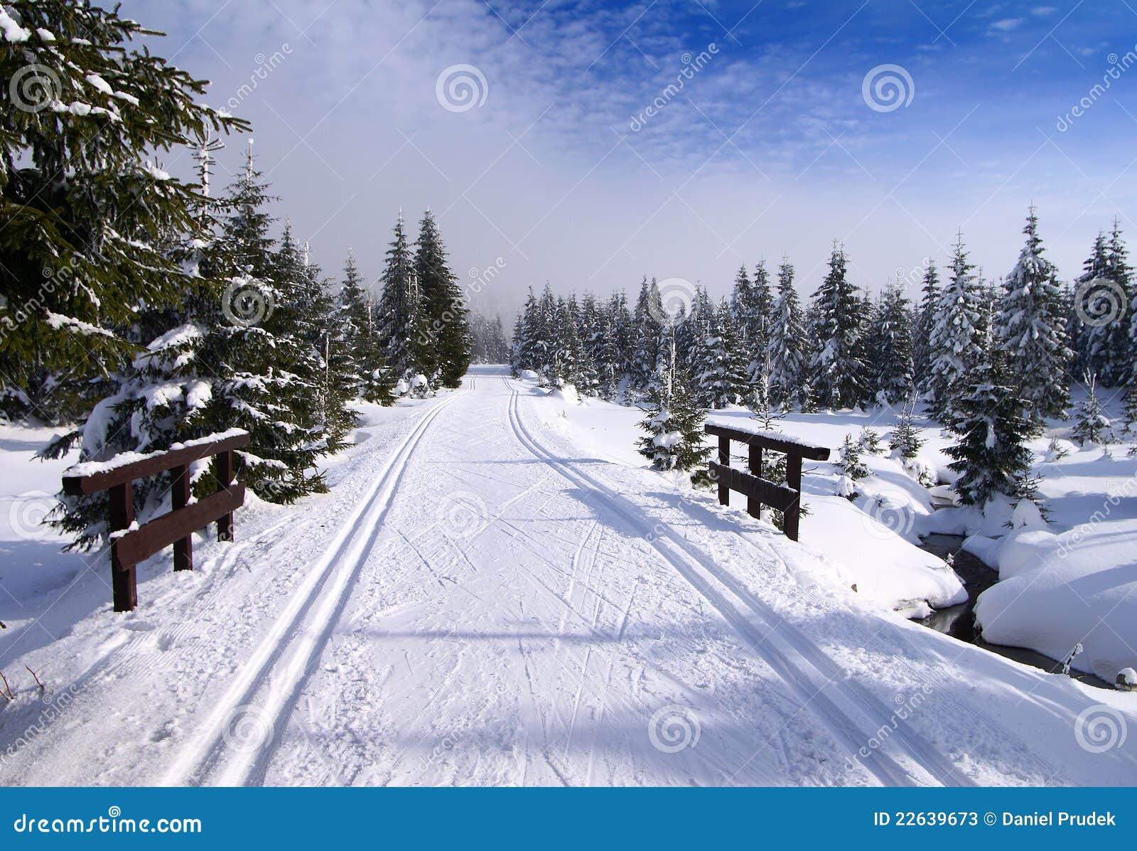 Paesaggio invernale di paesaggio immagine stock immagine for Foto paesaggi gratis