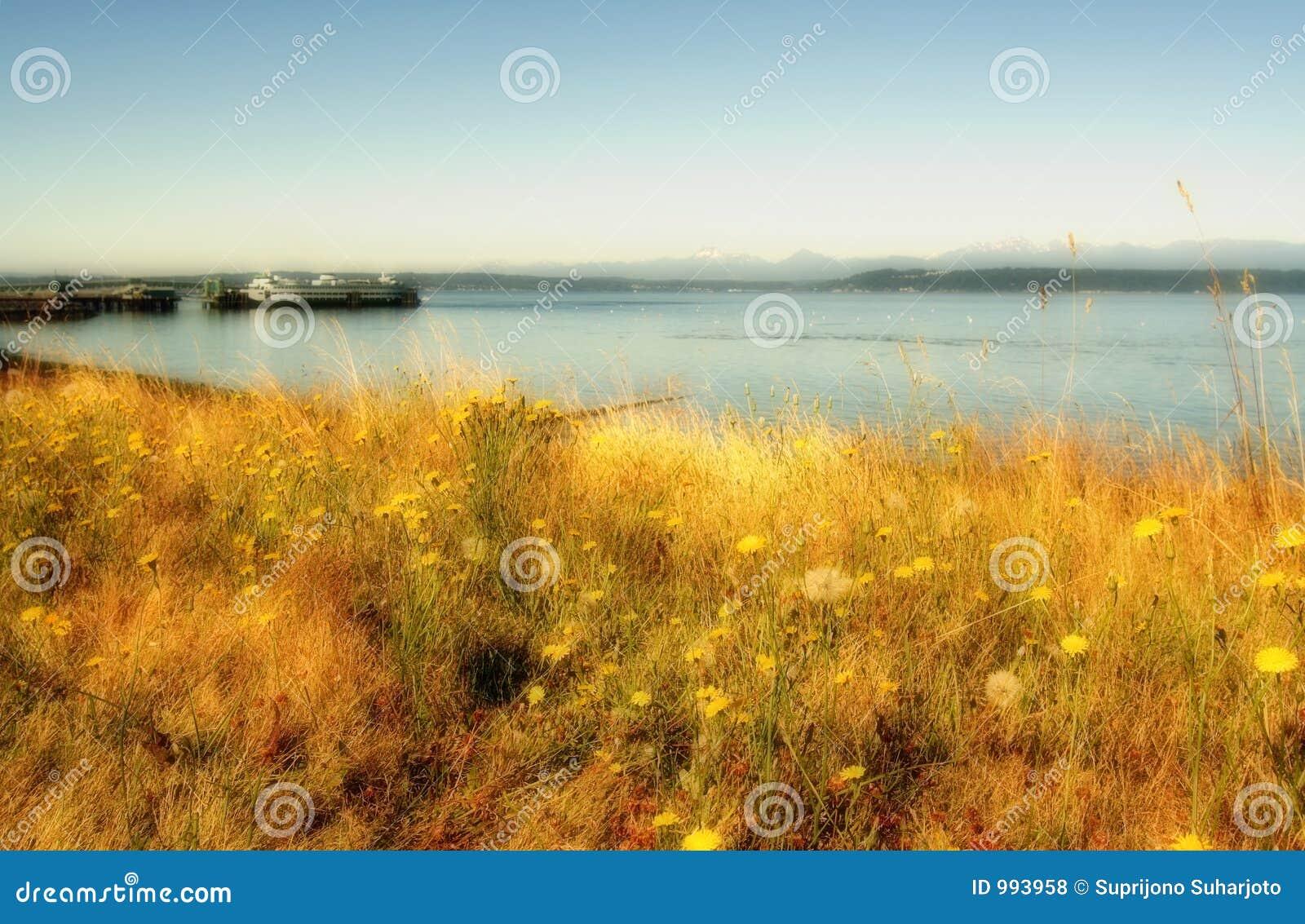 Paesaggio litoraneo