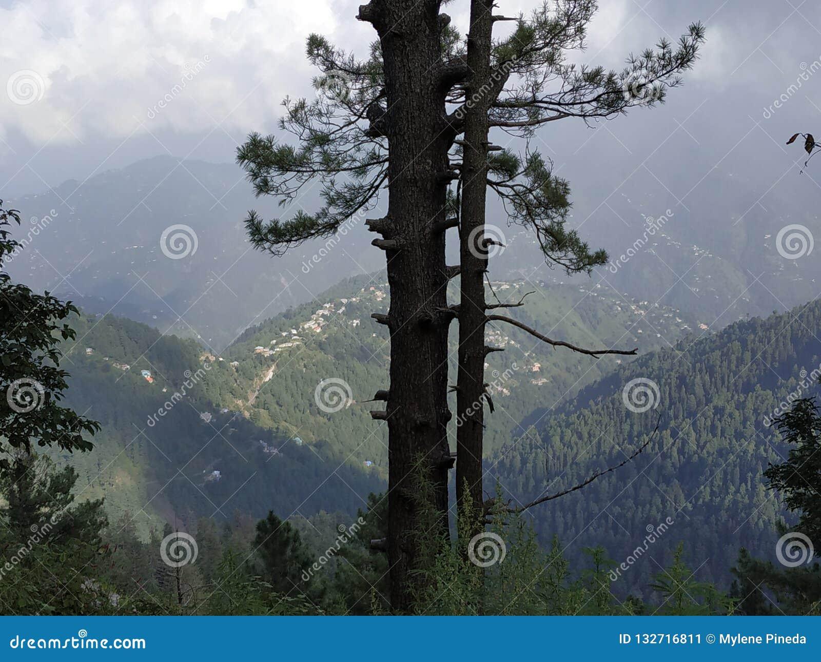 Paesaggio naturale del Pakistan