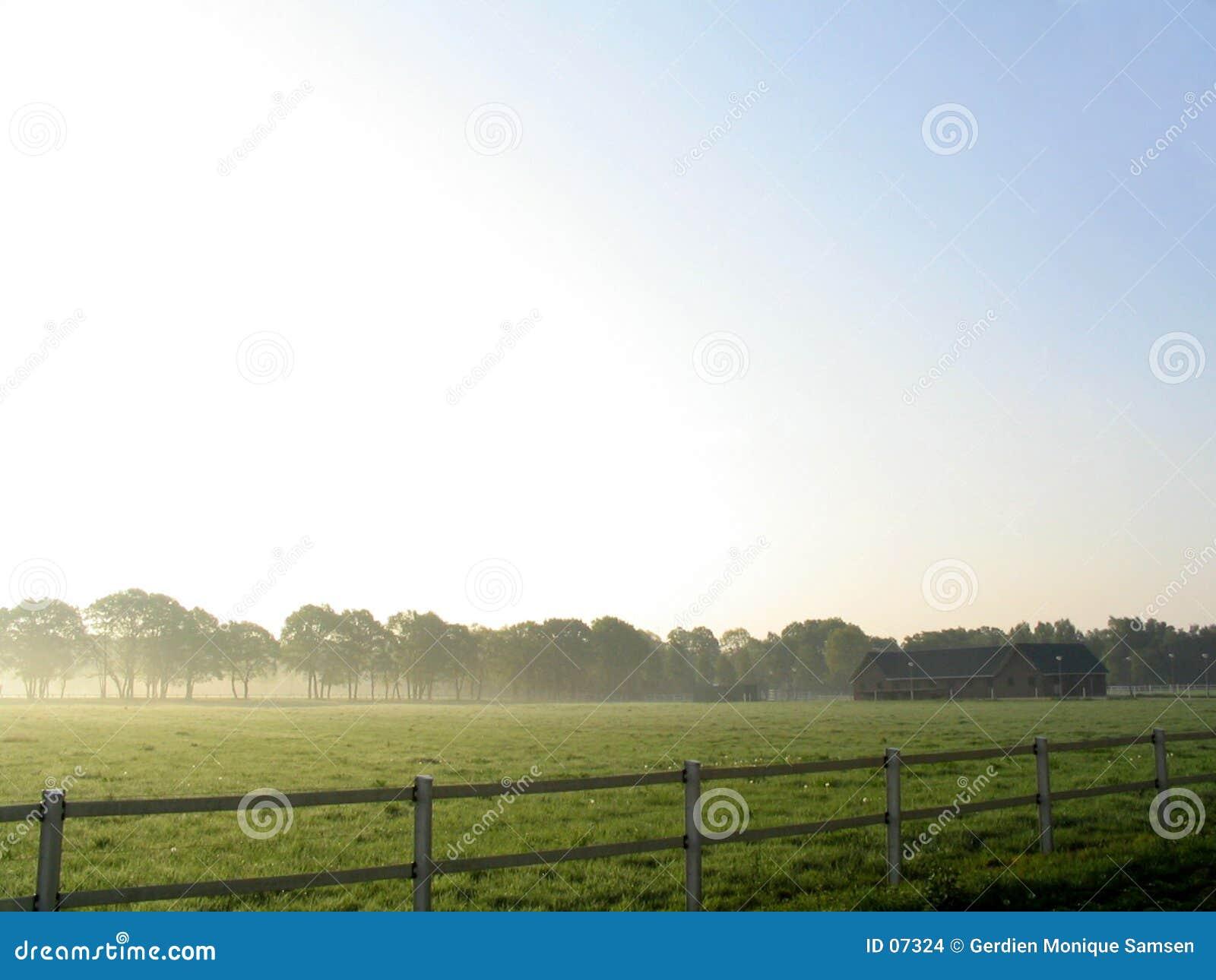 Paesaggio in nebbia