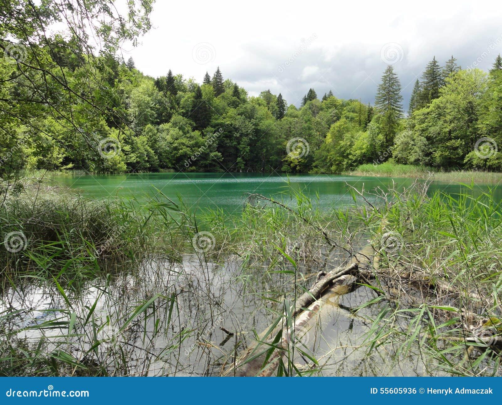 Paesaggio nel Croatia