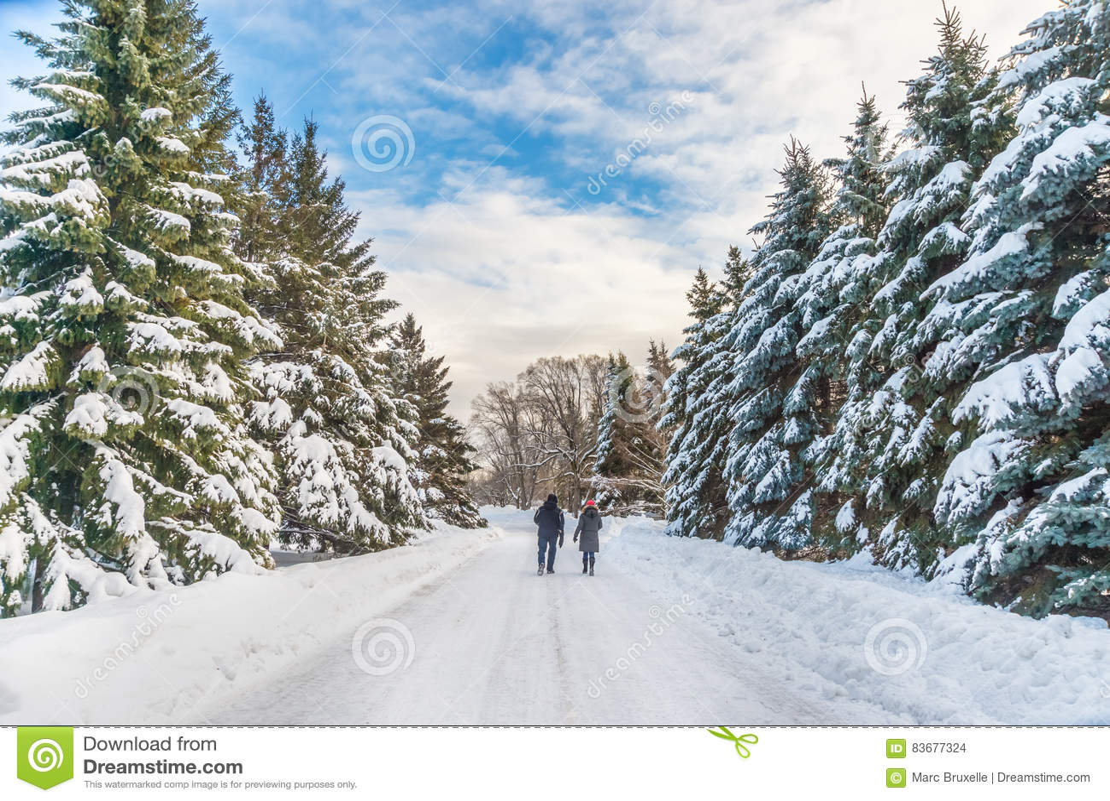 Paesaggio nevoso di inverno a Montreal