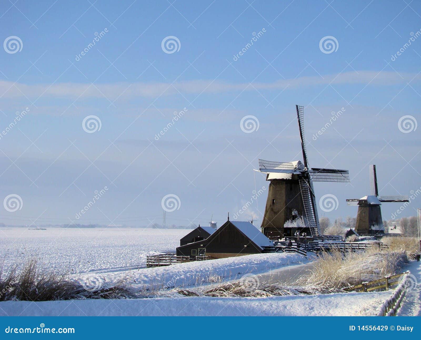 Paesaggio olandese tipico di inverno