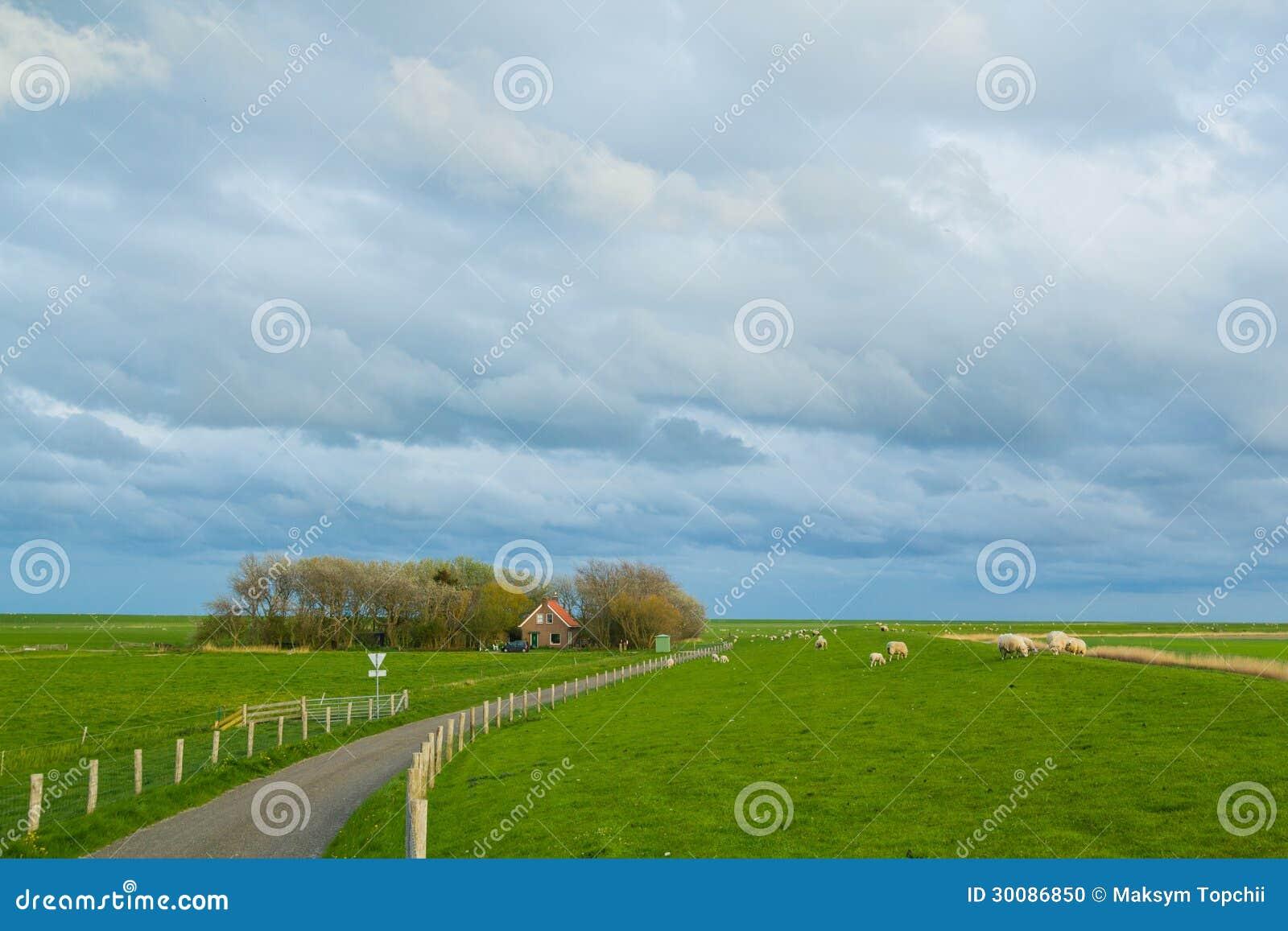 Villaggio olandese tradizionale