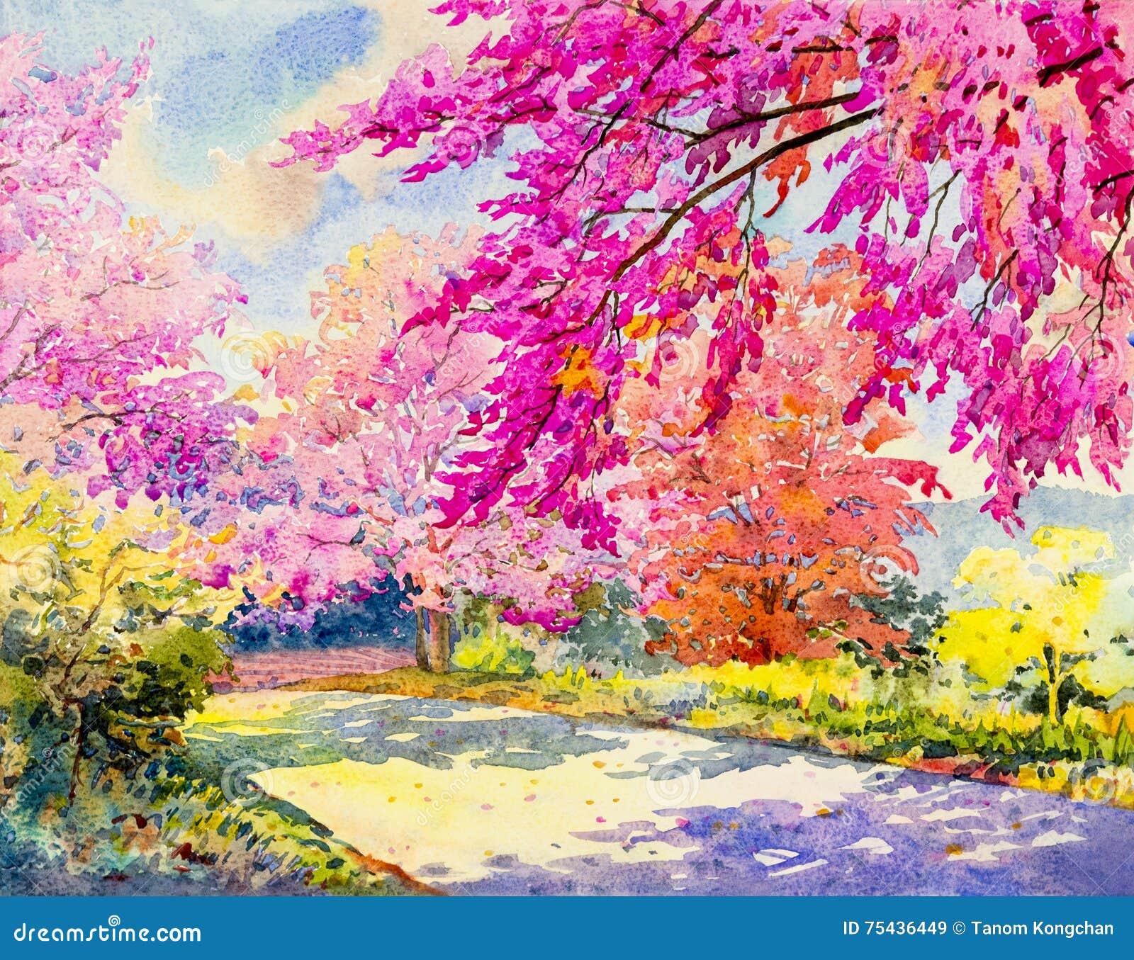 Paesaggio originale dell acquerello che dipinge colore rosa della ciliegia himalayana selvatica