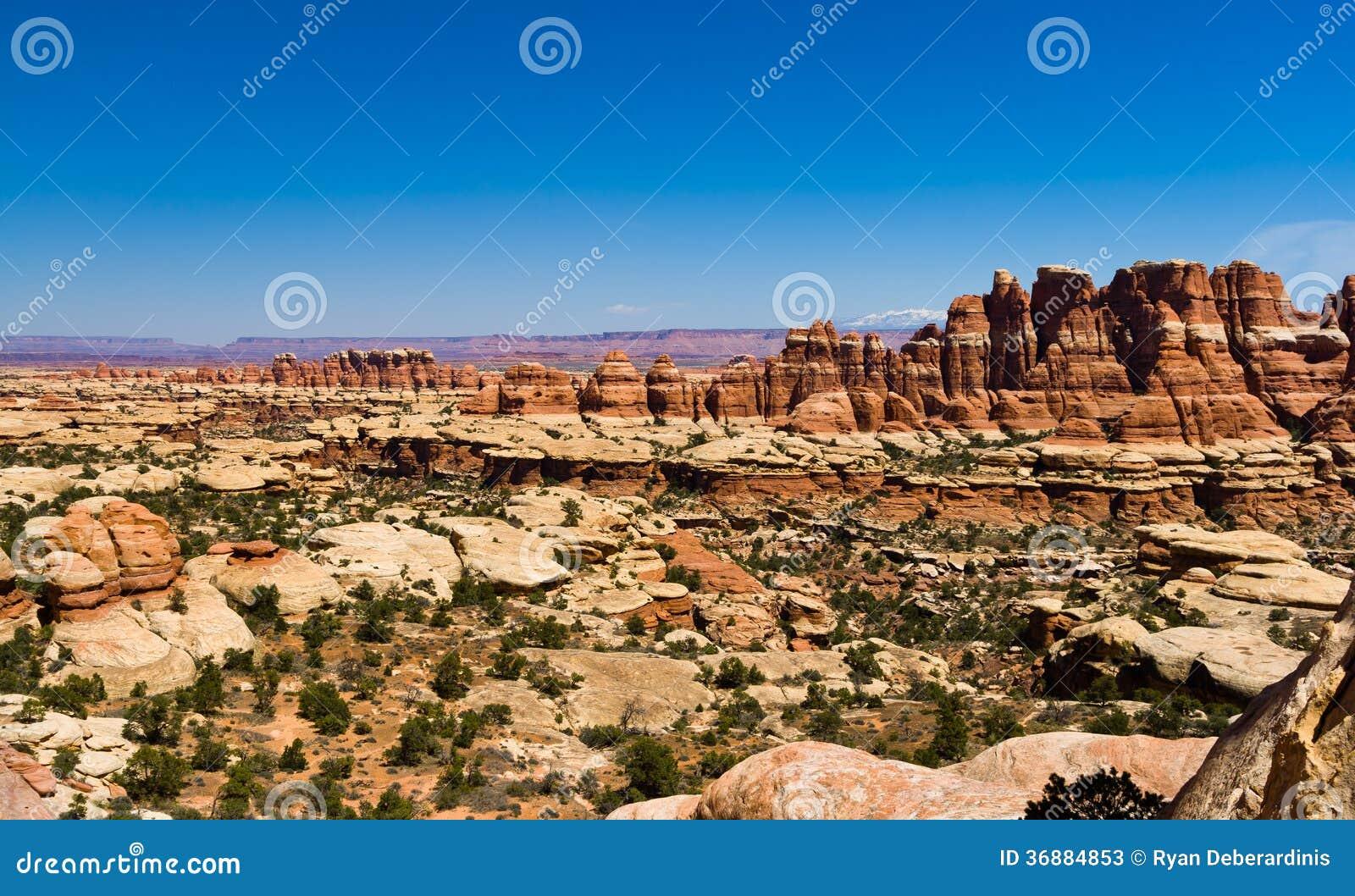 Download Paesaggio Panoramico Del Canyon Del Deserto Immagine Stock - Immagine di archi, naughty: 36884853