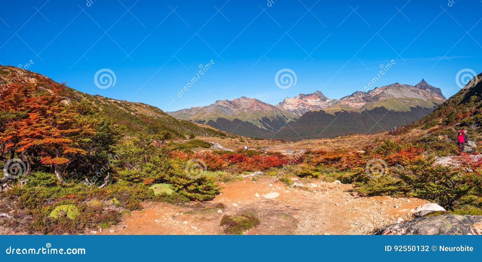 Paesaggio panoramico di Tierra del Fuego National Park, Patagonia