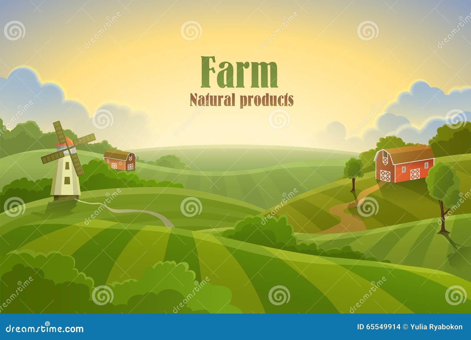 Paesaggio piano dell azienda agricola