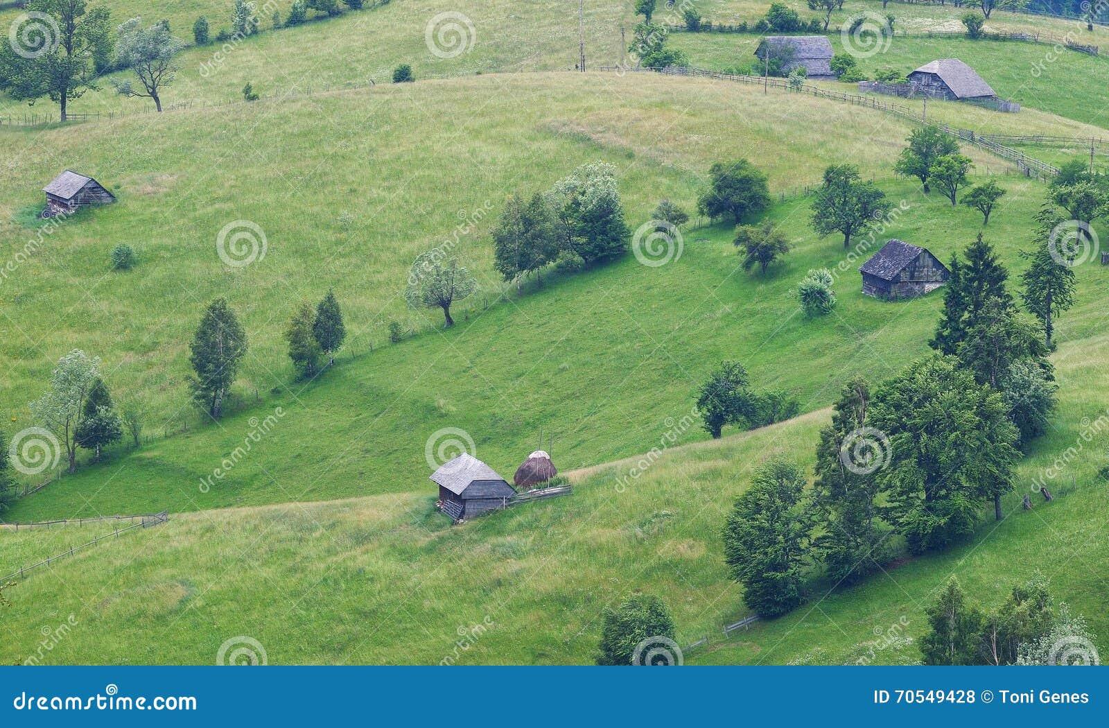 Case In Legno Romania : Paesaggio rurale con le vecchie case di legno e le terre verdi