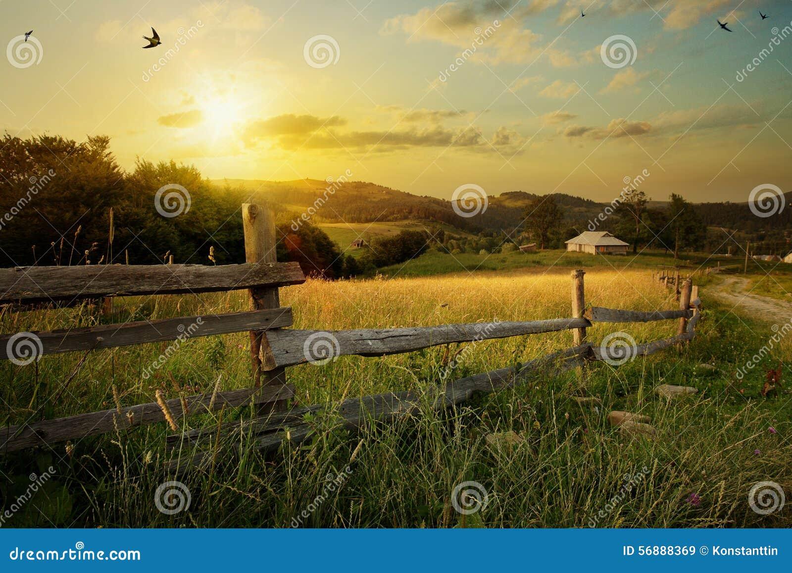 Paesaggio rurale di arte