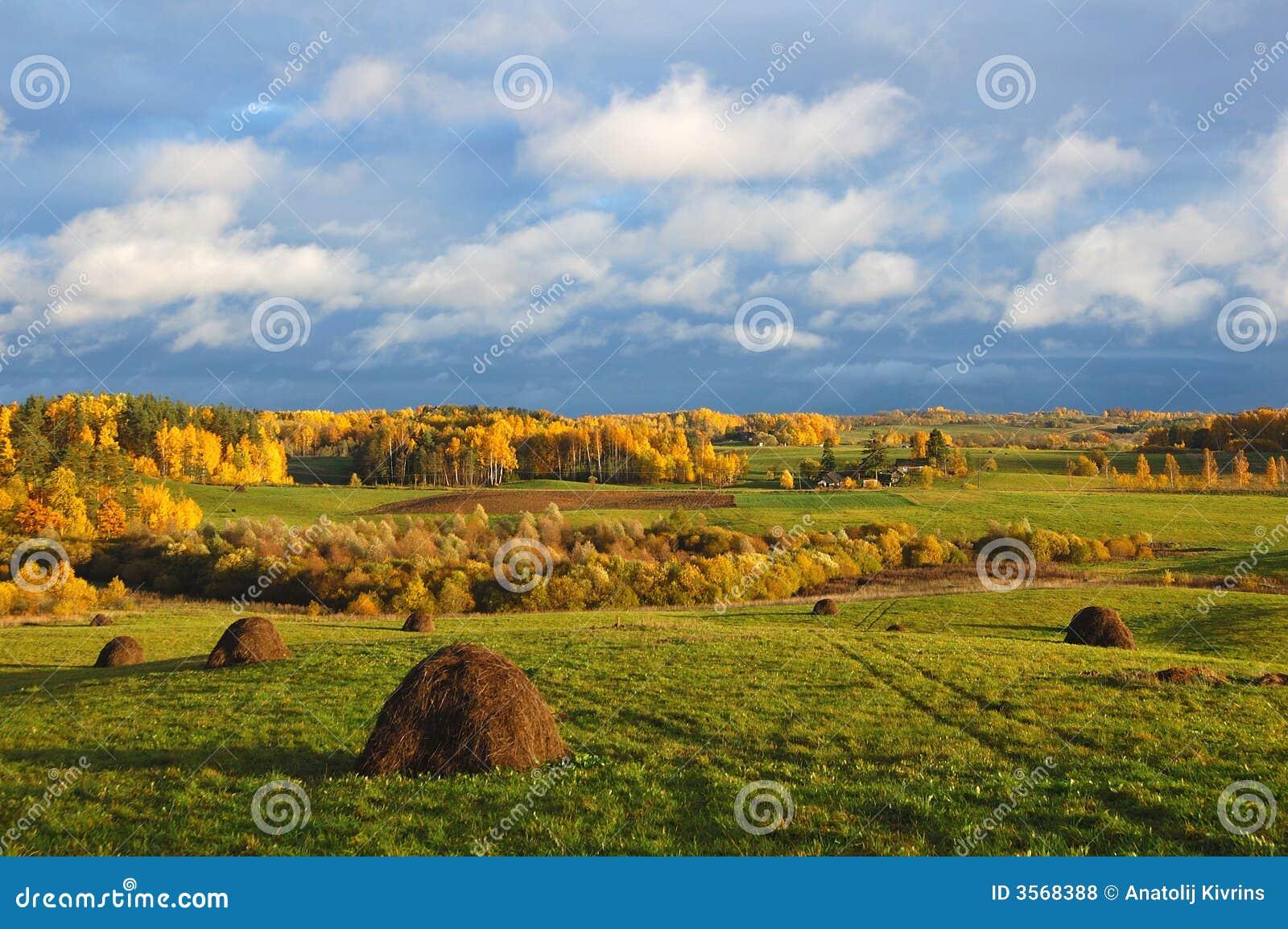 Paesaggio rurale di autunno