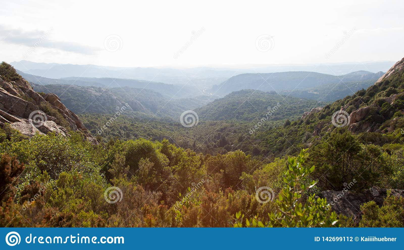 Paesaggio sardo di tramonto di estate della montagna Foresta sul pendio di collina sotto il cielo con le nuvole